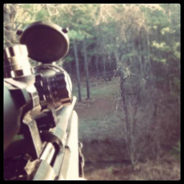 Rifles Photograph - #instagram #nature #gun #rifle #hunting by Aaron Justice