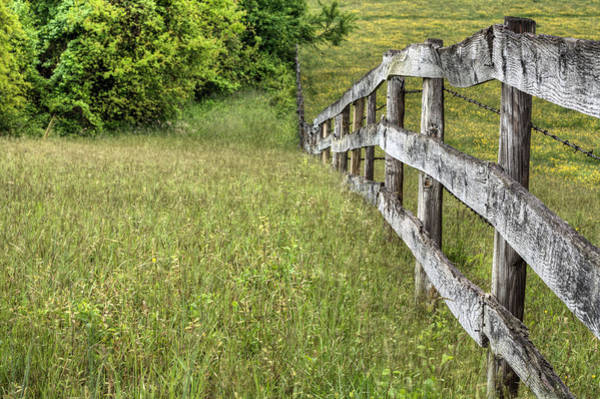 Warrenton Wall Art - Photograph - Into The Distance  by JC Findley