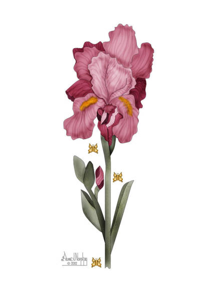 Wall Art - Painting - Iris I by Anne Norskog