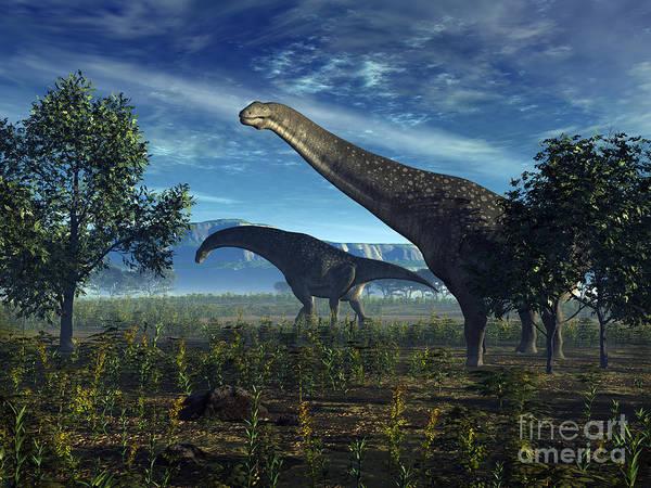 Paleobotany Digital Art - Isisaurus Dinosaurs Wander Lush Plains by Walter Myers