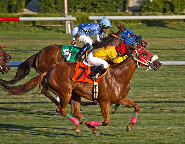 Racetrack Photograph - It Takes Talent by Betsy Knapp