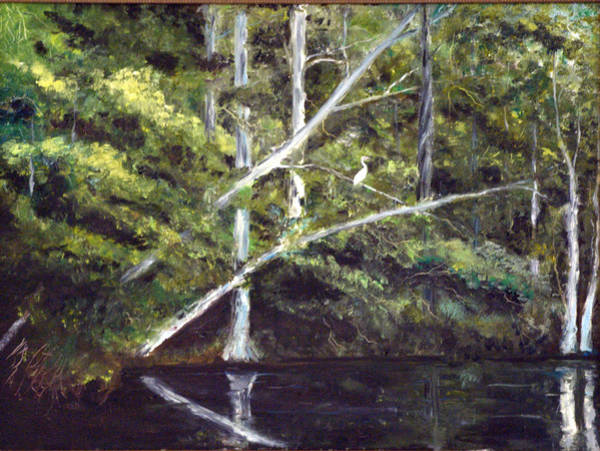 Painting - Jackson Bluff On The Waccamaw River by Phil Burton