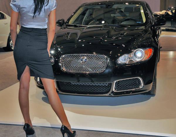 Photograph - Jaguar 2009 by Dragan Kudjerski