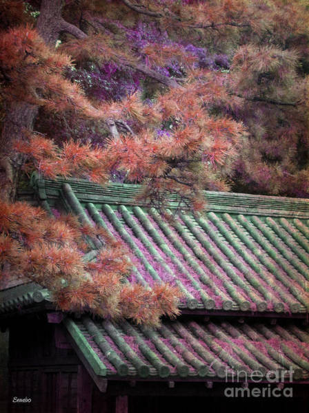 Photograph - Japanese Dream by Eena Bo