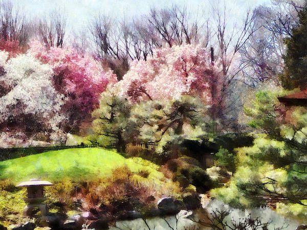 Photograph - Japanese Spring by Susan Savad