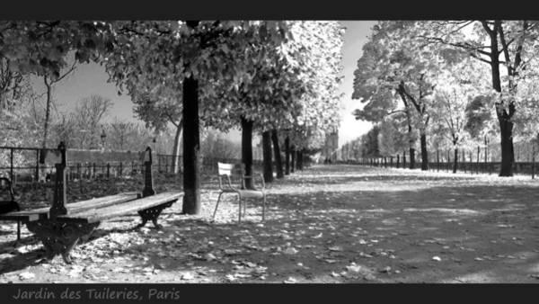 Jardin Des Tuileries Photograph - Jardin Des Tuileries Paris by Bakhtiar Umataliev