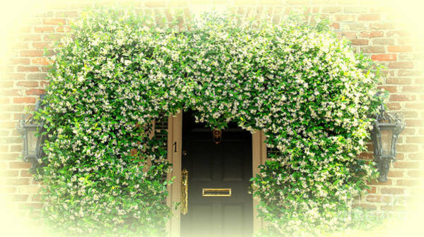 Wall Art - Photograph - Jasmine Covered House Door In Charleston Sc by Susanne Van Hulst