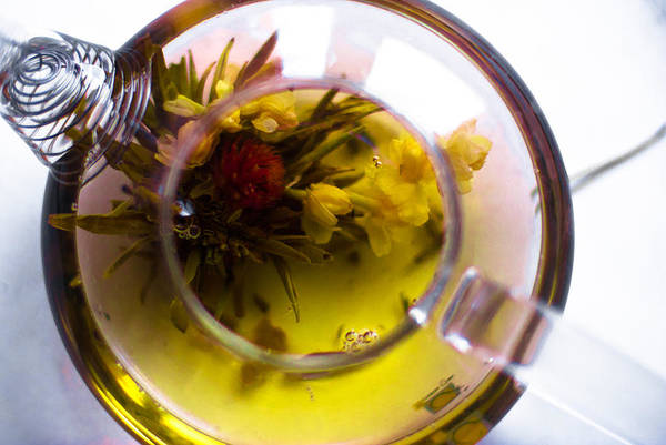 Jasmine Tea Photograph - Jasmine Tea by Veronika Denega