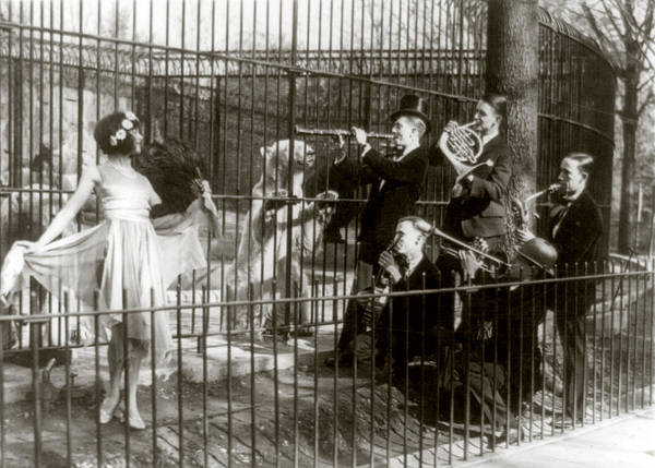 Dancing Bears Photograph - Jazz For The Bears, Five Men Playing by Everett