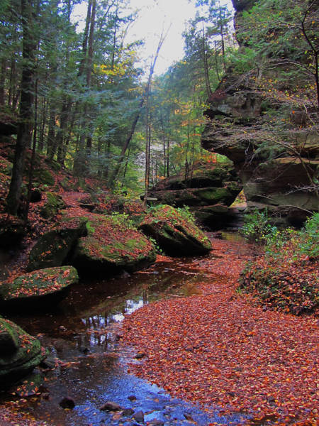 Hocking Hills Photograph - Jewel Of Ohio by Vijay Sharon Govender