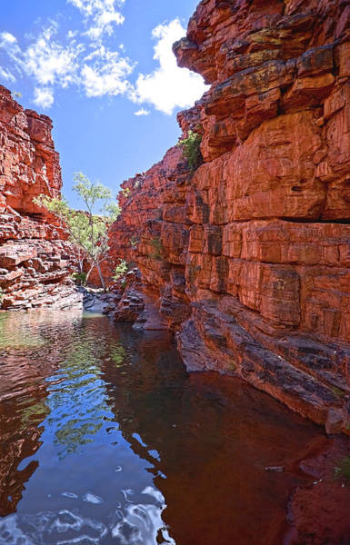 Photograph - John Hayes Rockhole by Paul Svensen