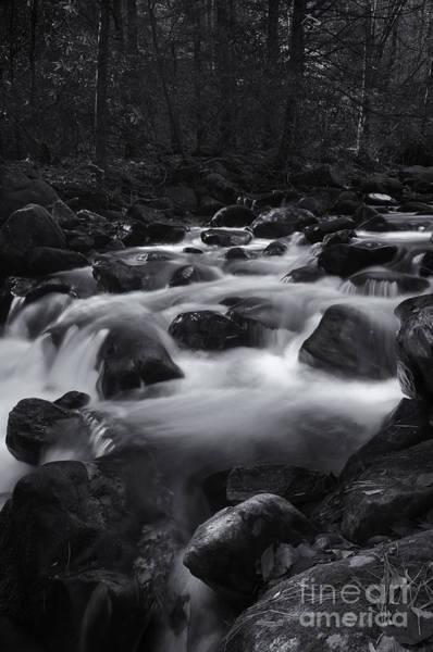 Photograph - Jones Gap Black And White II by David Waldrop