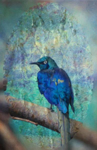 Photograph - Josh's Blue Bird by Trish Tritz