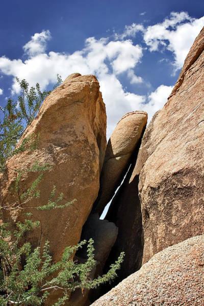 Photograph - Joshua Tree Boulders by Endre Balogh