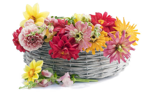 Wall Art - Photograph - July European Flowers In Basket by Aleksandr Volkov