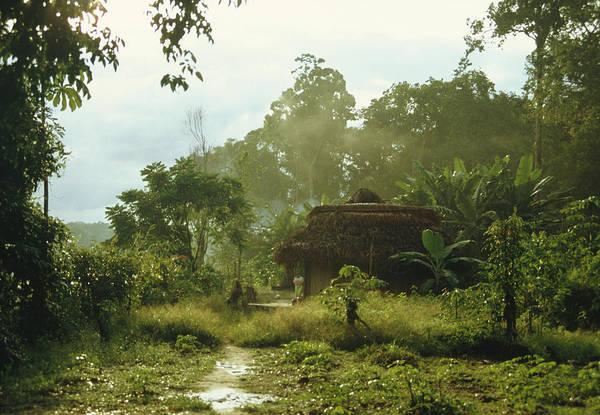 Smallholding Photograph - Jungle Settlement by Diccon Alexander