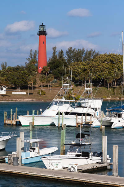 Photograph - Jupiter Inlet Lighthouse And Marina by Ed Gleichman