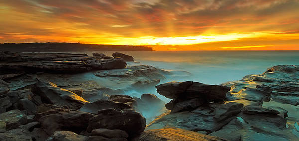 Photograph - Just Glorious by Mark Lucey