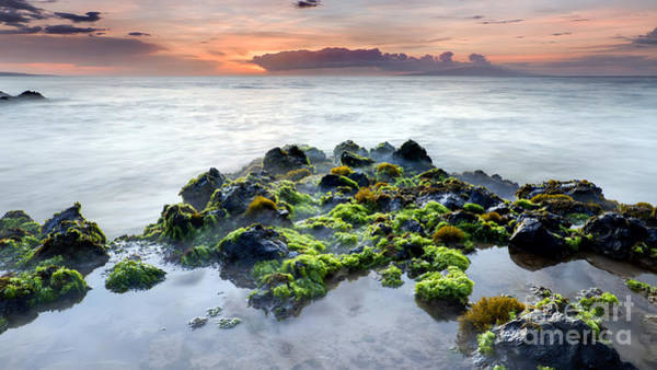 Tidal Photograph - Kamaole 3 Beach Tidal Pool Maui by Dustin K Ryan