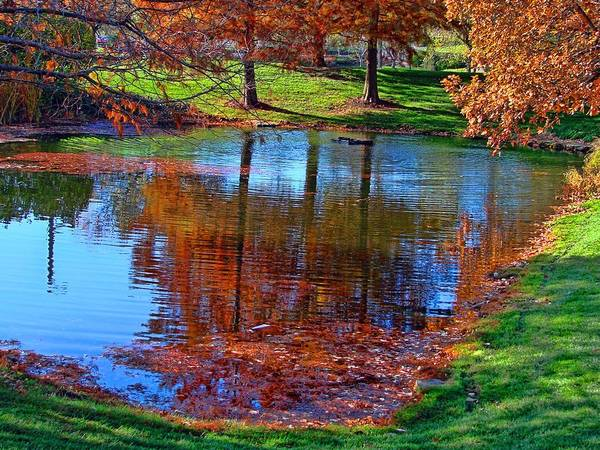 Photograph - Kansas Fall Foliage Reflecting Pool by Tim McCullough