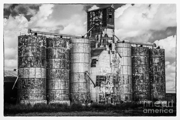 Photograph - Kansas Grain Elevator by David Waldrop