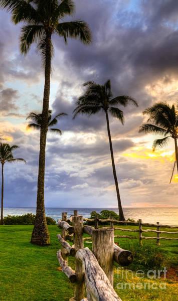 Kapalua Photograph - Kapalua Coconut Sunset by Kelly Wade
