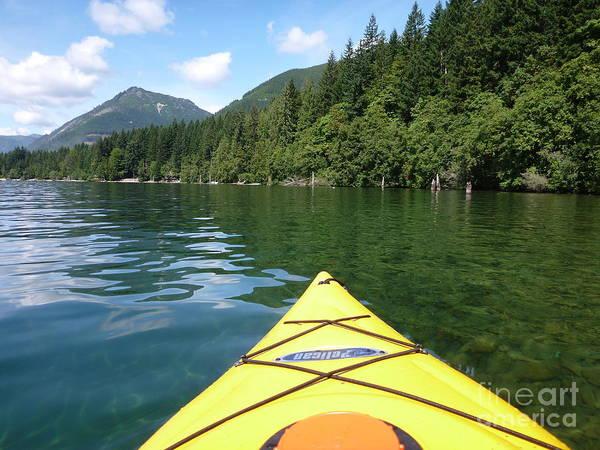 Photograph - Kayaking by Traci Cottingham