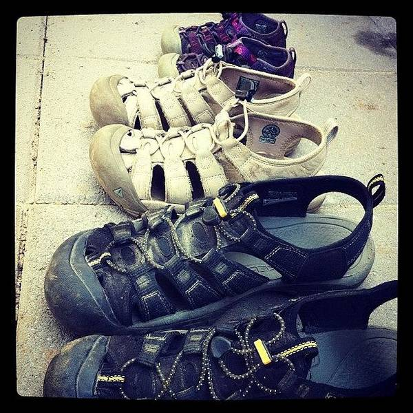 Wall Art - Photograph - Keen Family #keen #shoes by Abril Andrade Griffith
