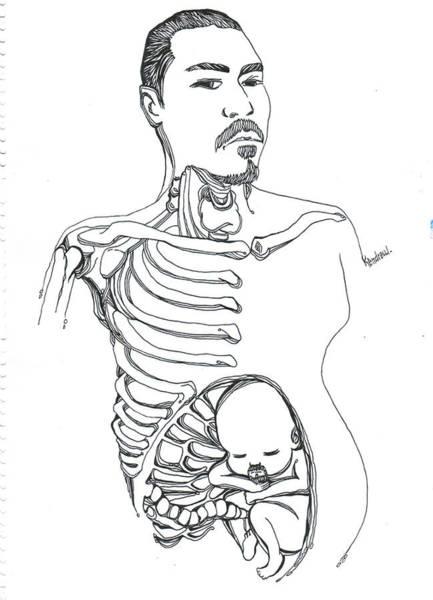 Dark Pink Drawing - Kendrew by Kendrew Black