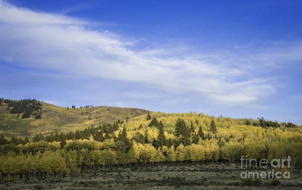 Photograph - Kenosha Pass Co by David Waldrop