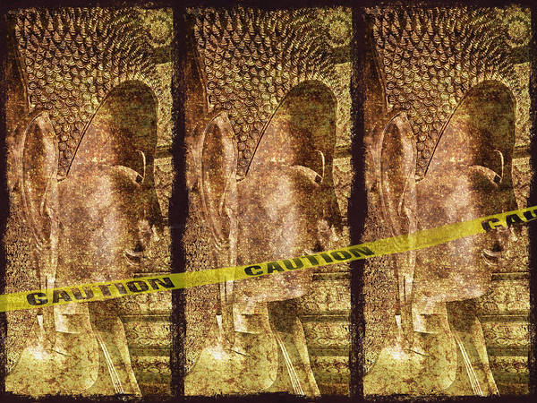 Wall Art - Photograph - Kill The Buddha by Skip Nall