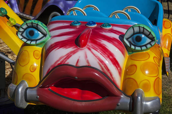 Wall Art - Photograph - Kitty Car Ride by Garry Gay