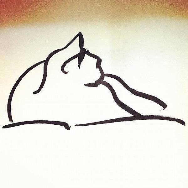 Brush Wall Art - Photograph - #kitty #cat #brush #drawing by Jeff Reinhardt