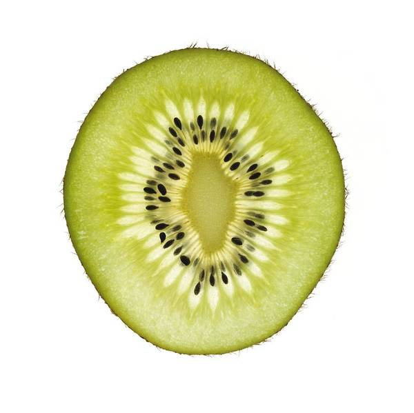 Kiwifruit Photograph - Kiwi Slice by Mark Sykes
