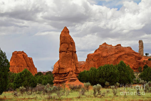 Entrada Photograph - Kodachrome Basin State Park by Lana Trussell
