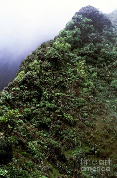 Photograph - Koolau Mountains 4 by Thomas R Fletcher