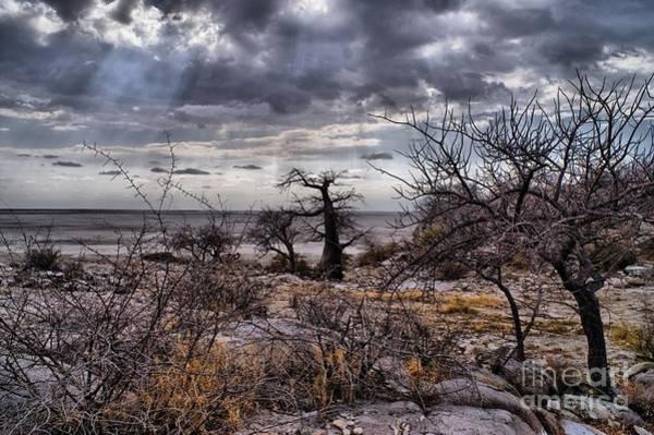Photograph - Kubu Island by Mareko Marciniak