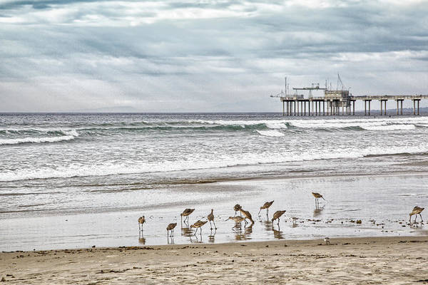 Photograph - La Jolla Shores 1 by Peter Dyke