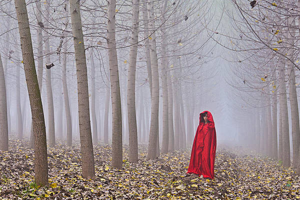 Photograph - Lady In Red - 7 by Okan YILMAZ