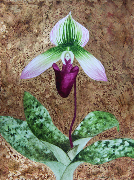 Orchid Mixed Media - Lady Slipper Orchid With Gold Leaf Background by Kerri Ligatich