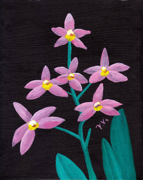 Painting - Laelia Lucasiana Orchid by M Valeriano