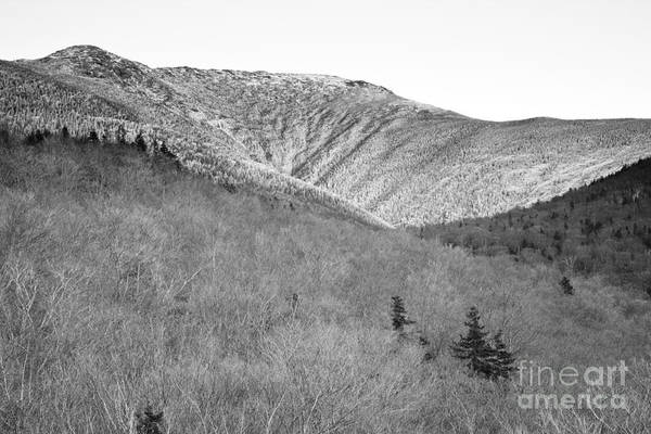 Photograph - Lafayette Brook Scenic Area - White Mountains Nh by Erin Paul Donovan
