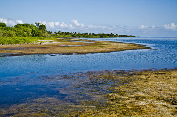 Photograph - Lagoon Inlet by Mike Fitzgerald