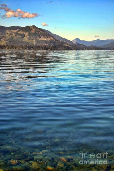 Photograph - Lake Cowichan Bc by Traci Cottingham