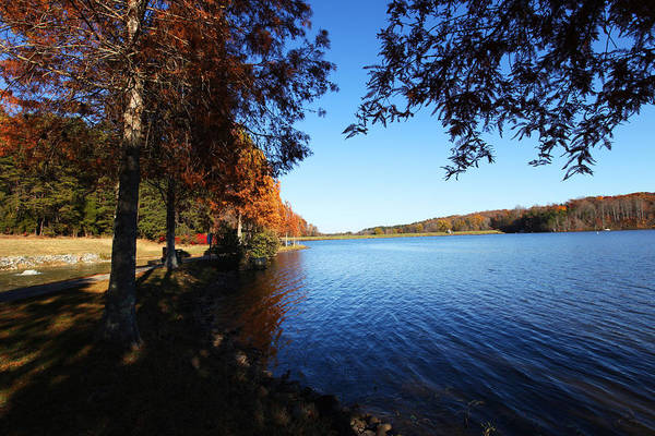 Photograph - Lake Higgins In North Carolina by Sheila Kay McIntyre