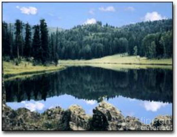 Photograph - Lake In Arizona by Stanley Morganstein