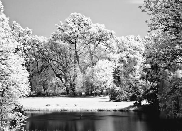 Photograph - Lake In Infra Red by Odon Czintos