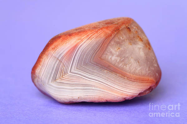 Photograph - Lake Superior Agate by Ted Kinsman