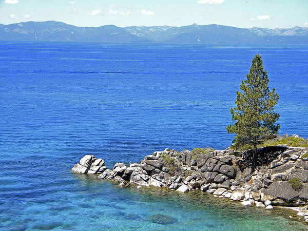 Photograph - Lake Tahoe Rocky Point by Frank Wilson