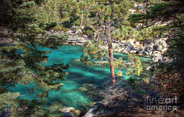 Photograph - Lake Tahoe Swimming Hole by Scott McGuire